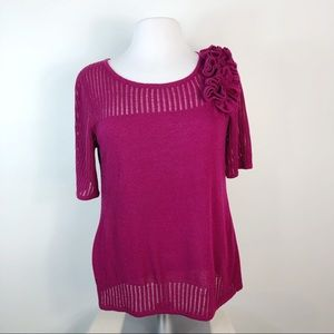 Cable & Gaige Pullover Knit Sweater Sheer Accents